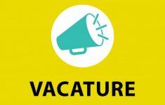 Vacature: medewerker buitenschoolse opvang
